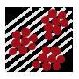 Logo tipi di uve