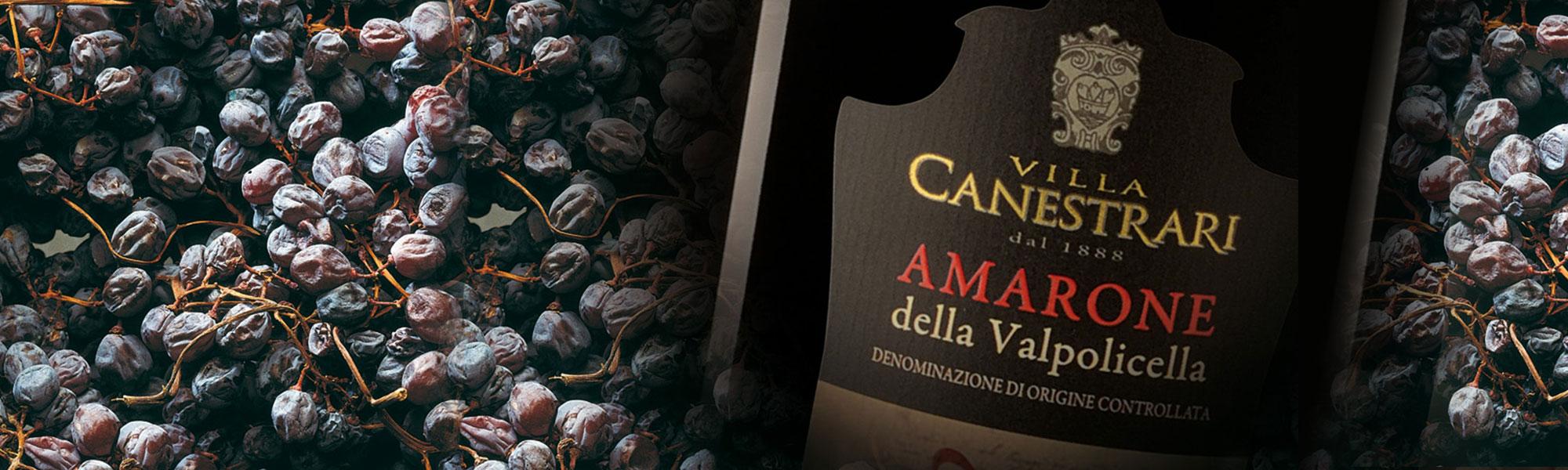APPASSIMENTO-Amarone-1