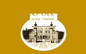 Logo Museo Del vino