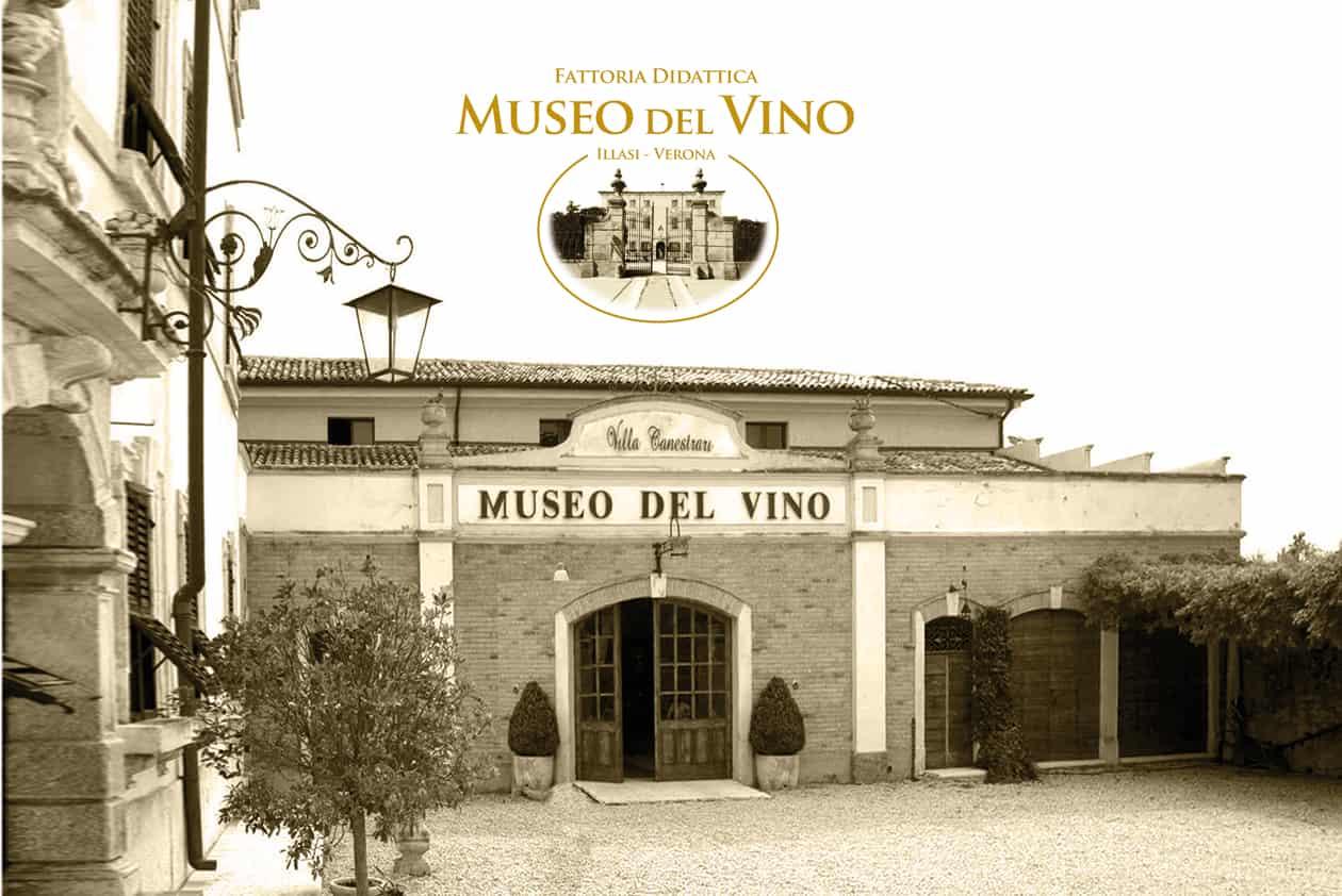 Museo del vino, Wine Museum