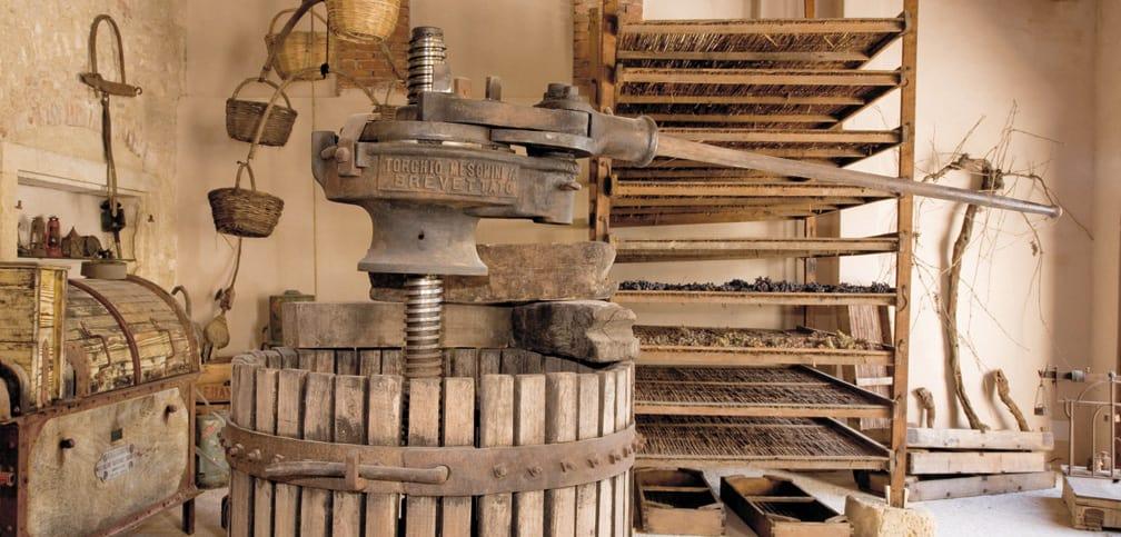 Villa Canestrari museo del vino antichi attrezzi da lavoro